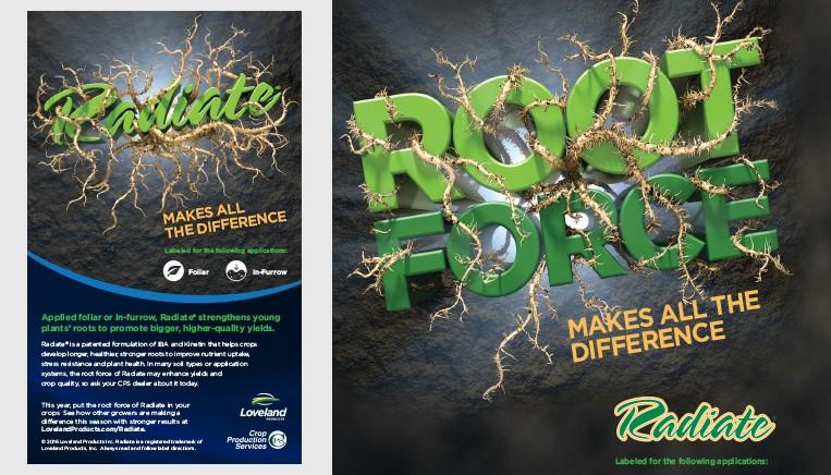 Root Radiate Ad