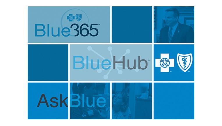 Bluecross work example